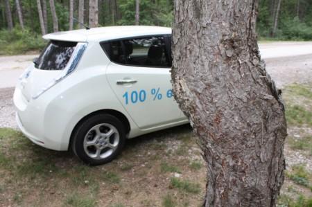Nissan Leaf Baum