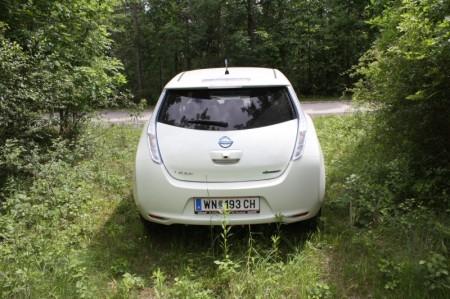 Nissan Leaf Wiese