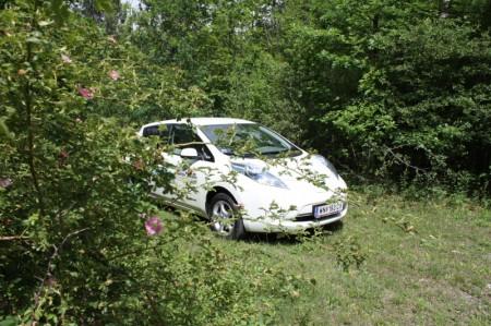 Nissan Leaf Natur
