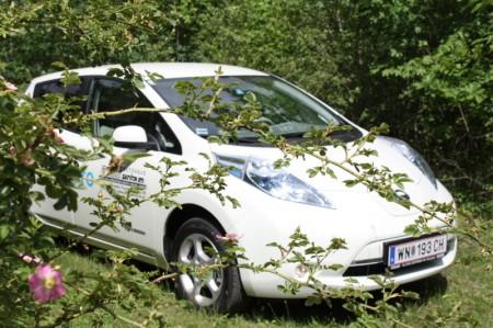 Nissan Leaf Strauch