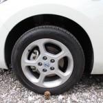 Nissan Leaf Rad