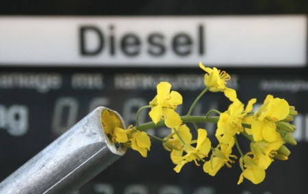 Biodiesel-Biokraftstoff
